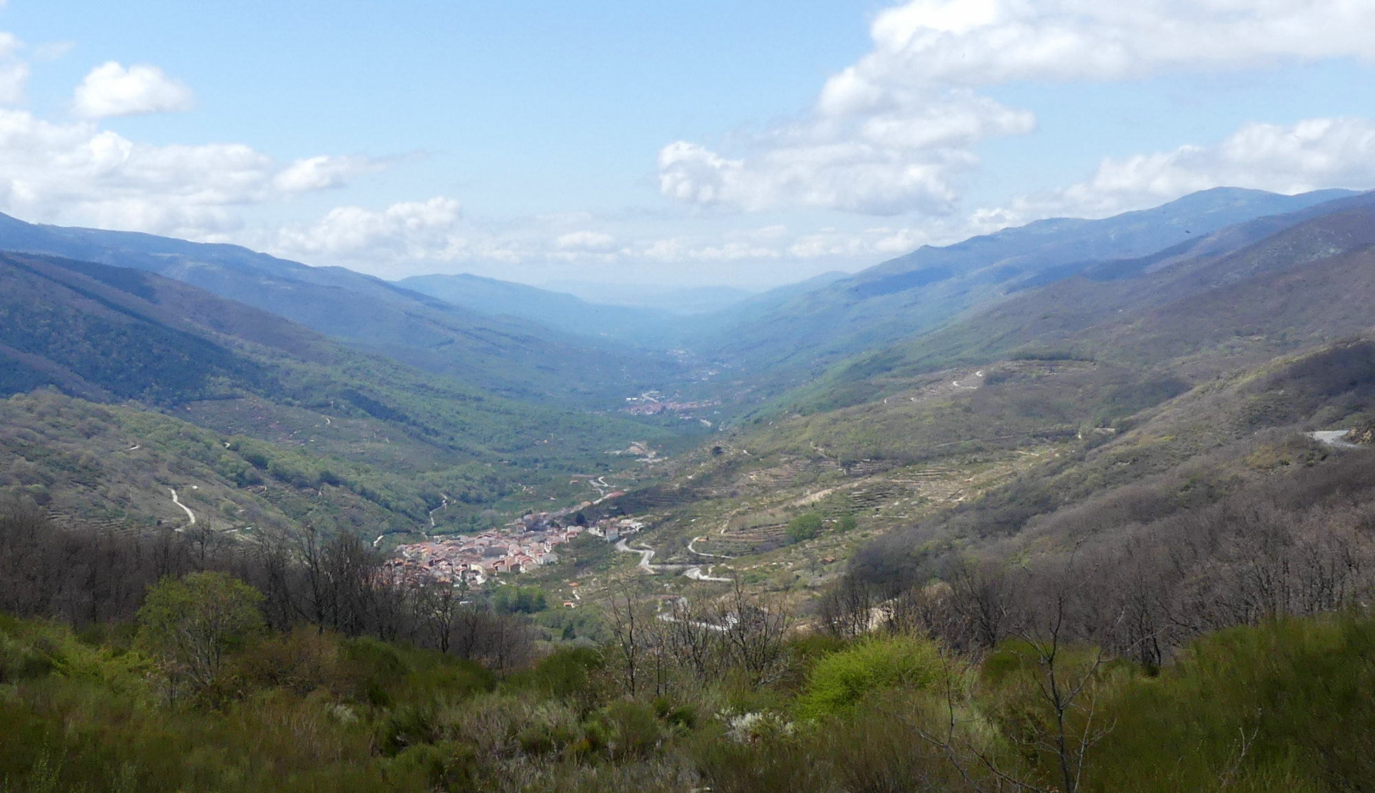 Valle del Jerte, 14 Apr 19