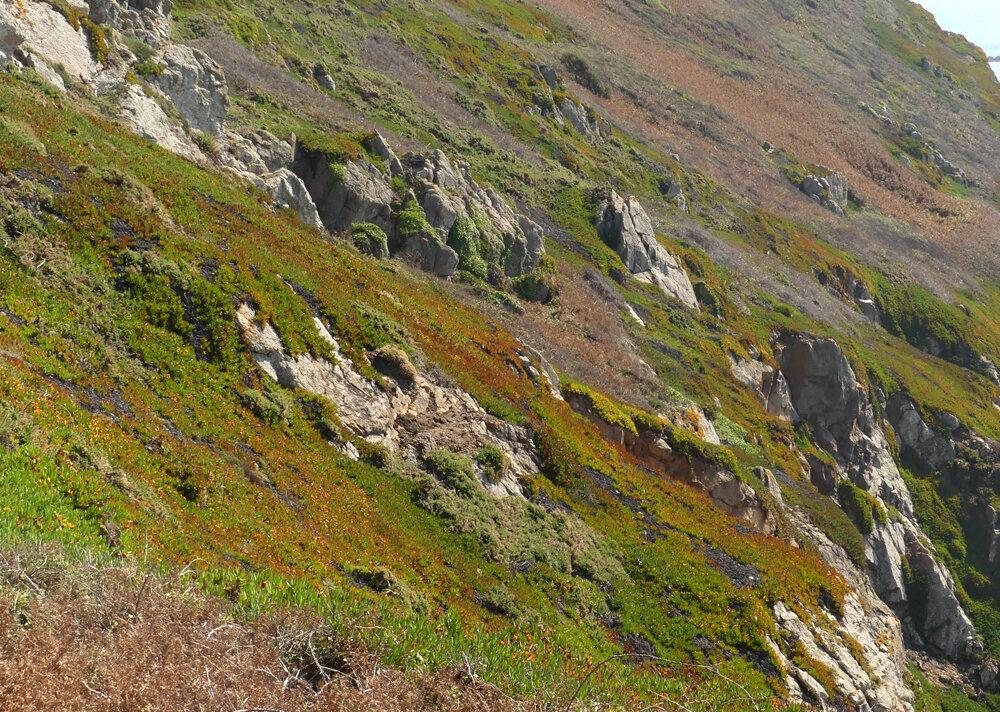 Colours on the cliffs - Les Tielles - 14 Sep 19