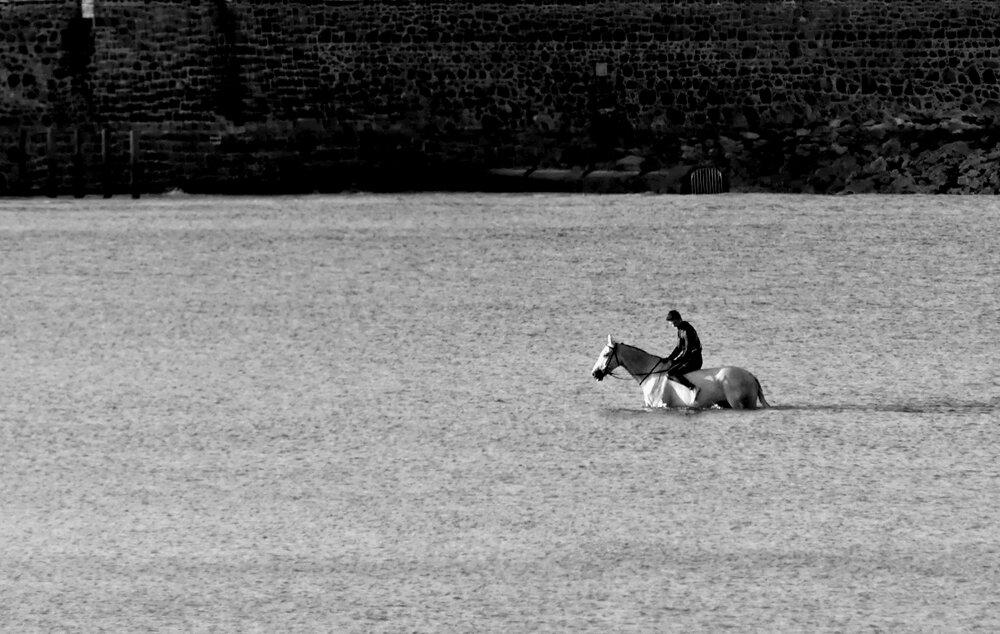 Horse at Vazon