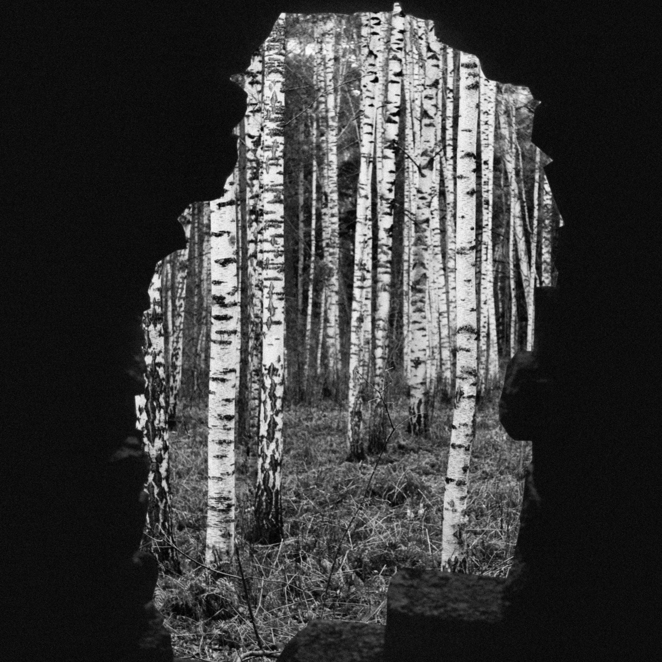 Duchamp3.jpg