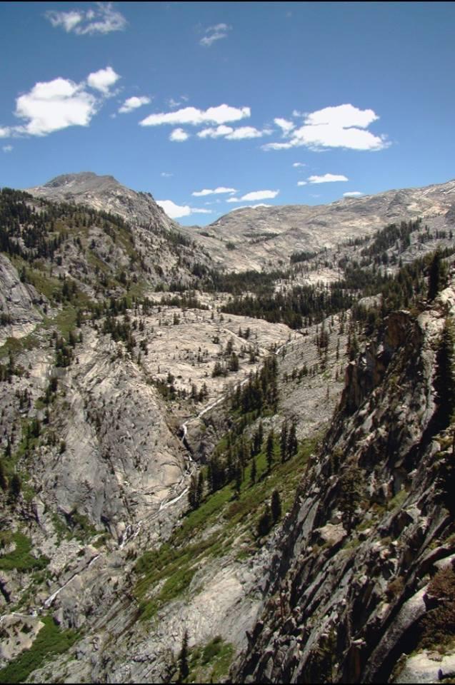 SequoiaNP2.jpg