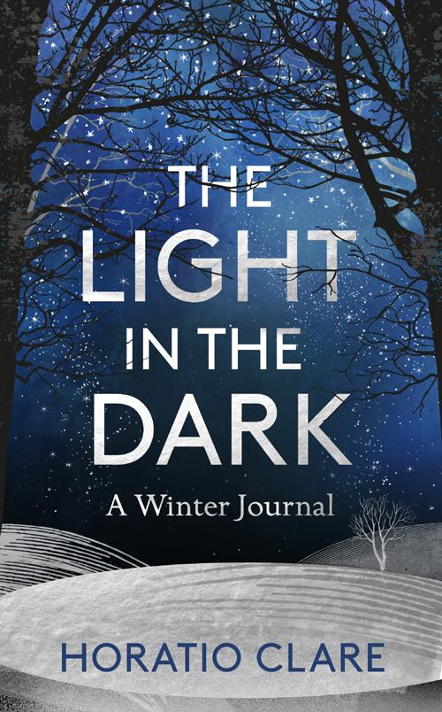 Light in the Dark final.jpg