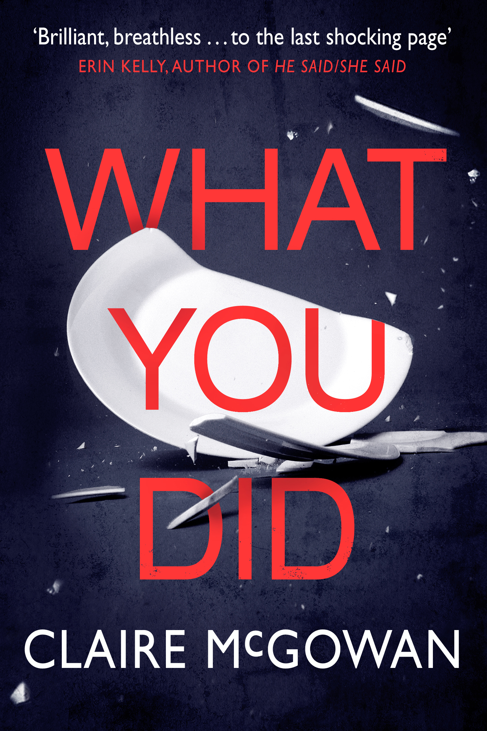What You Did - jacket image.jpg