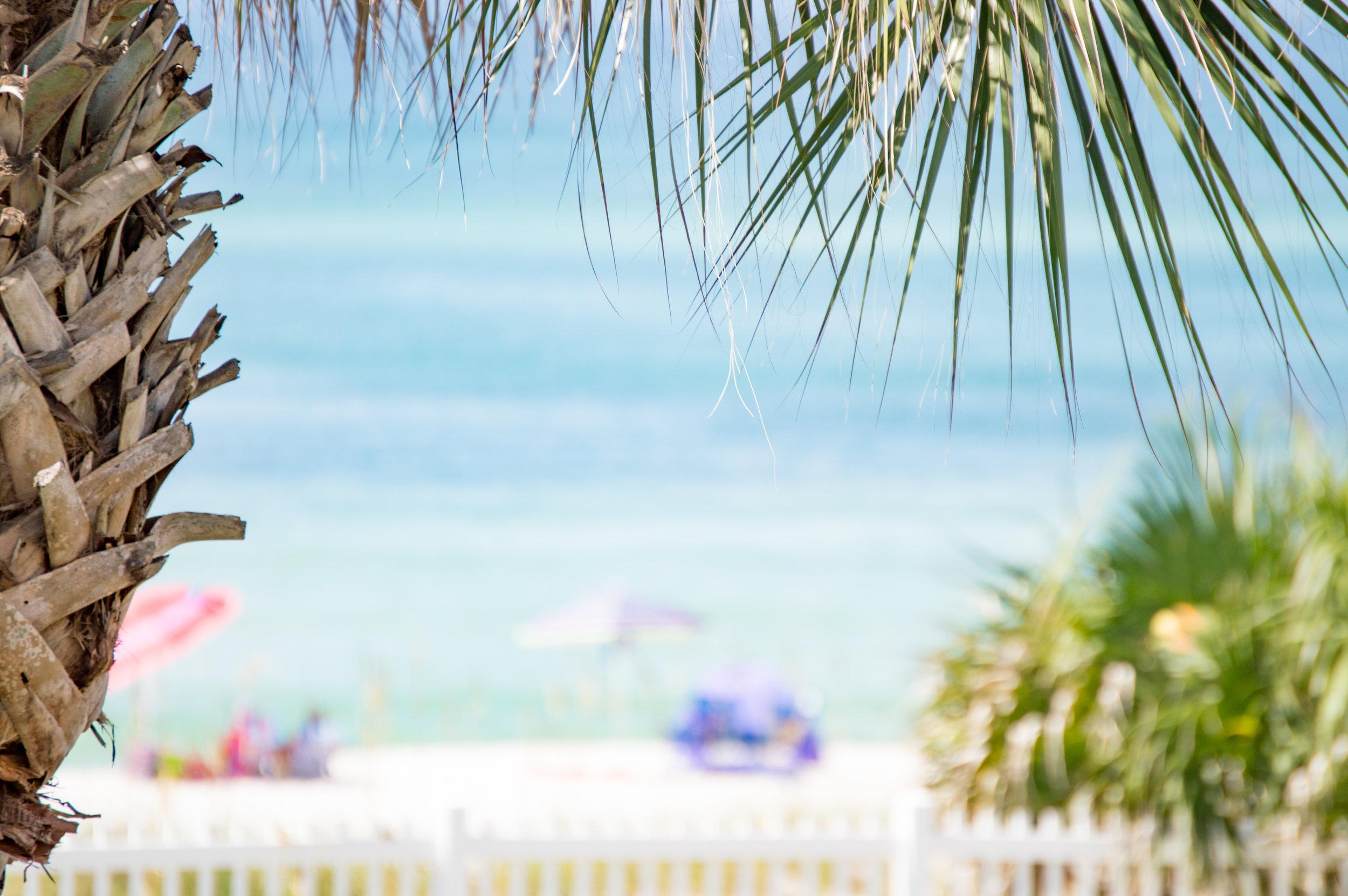 FLORIDA 2016-78.jpg