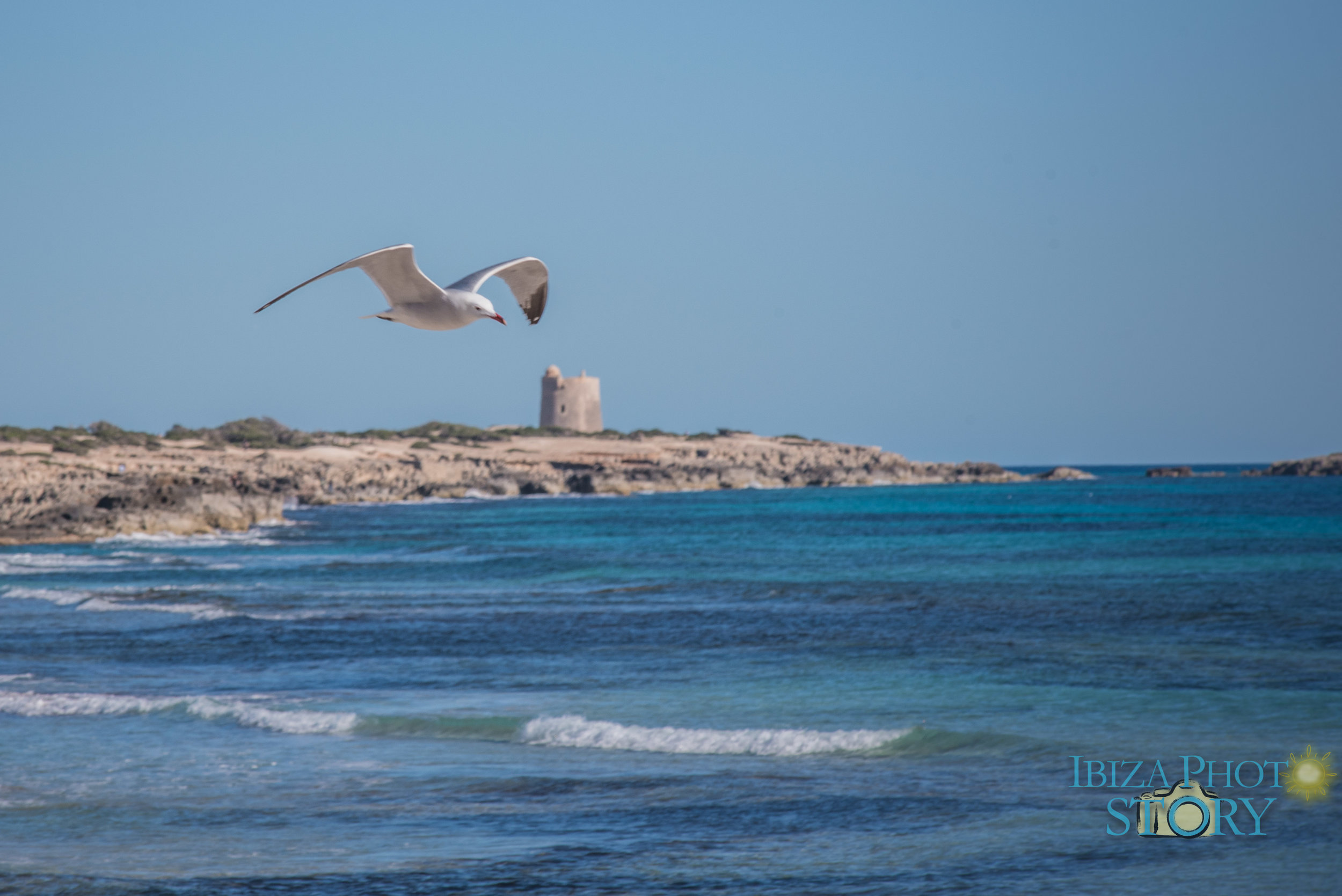 Ibiza Walking Photos (27).jpg