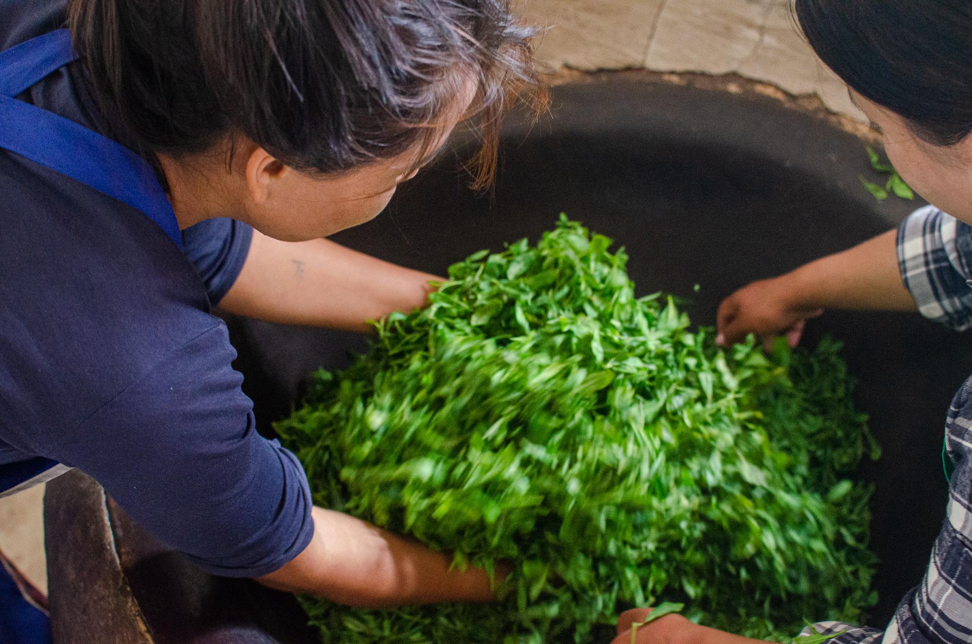 bhutan-green-tea-4.jpg
