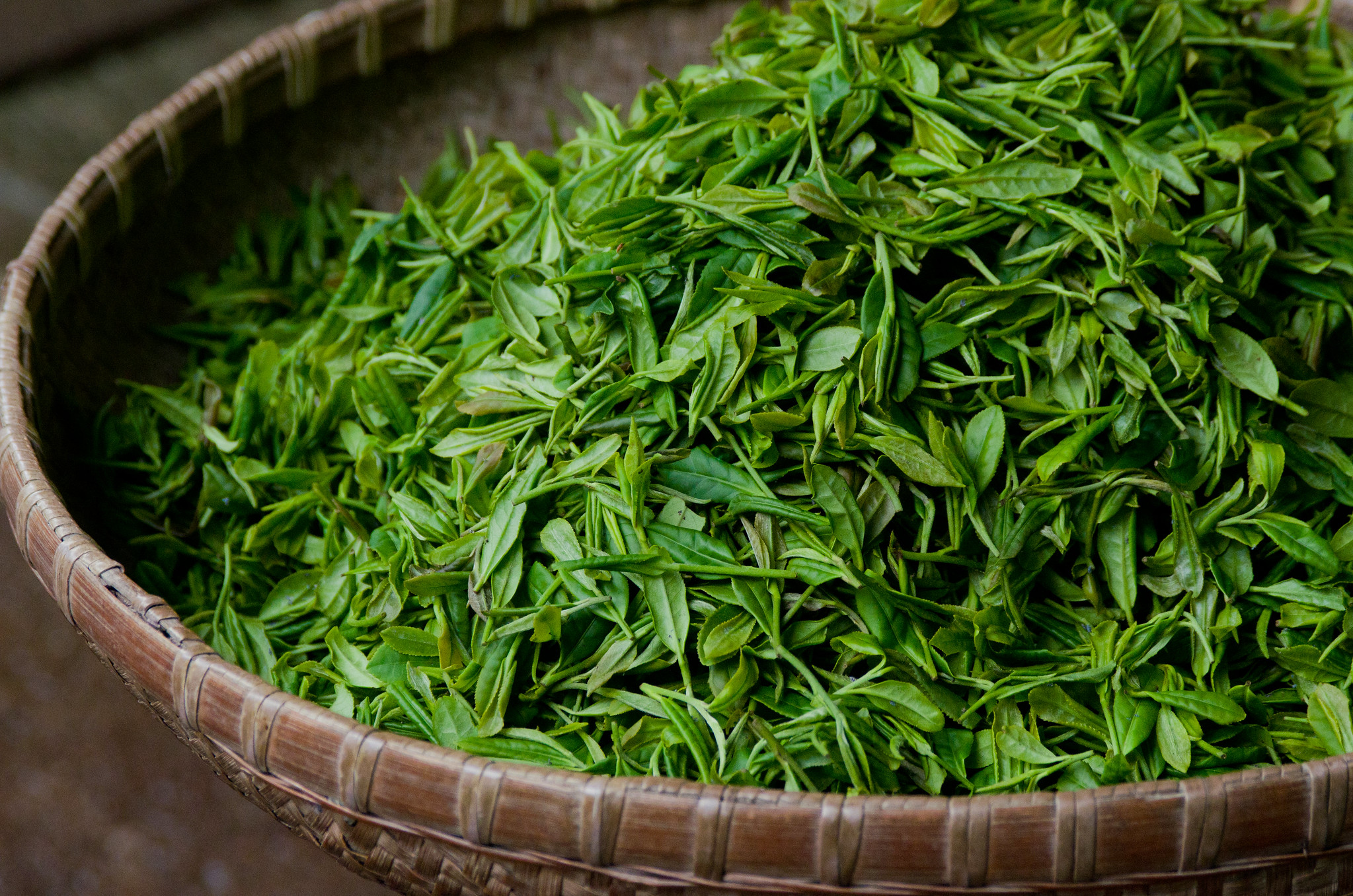 green-tea-leaves.jpg