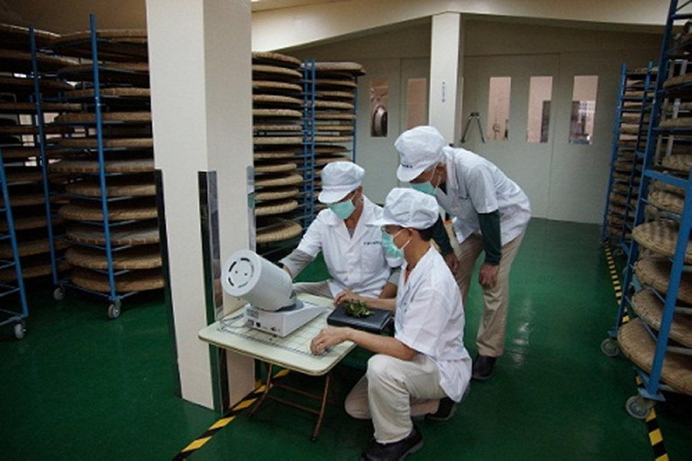 spring-fortune-oolong-tea-factory.jpg