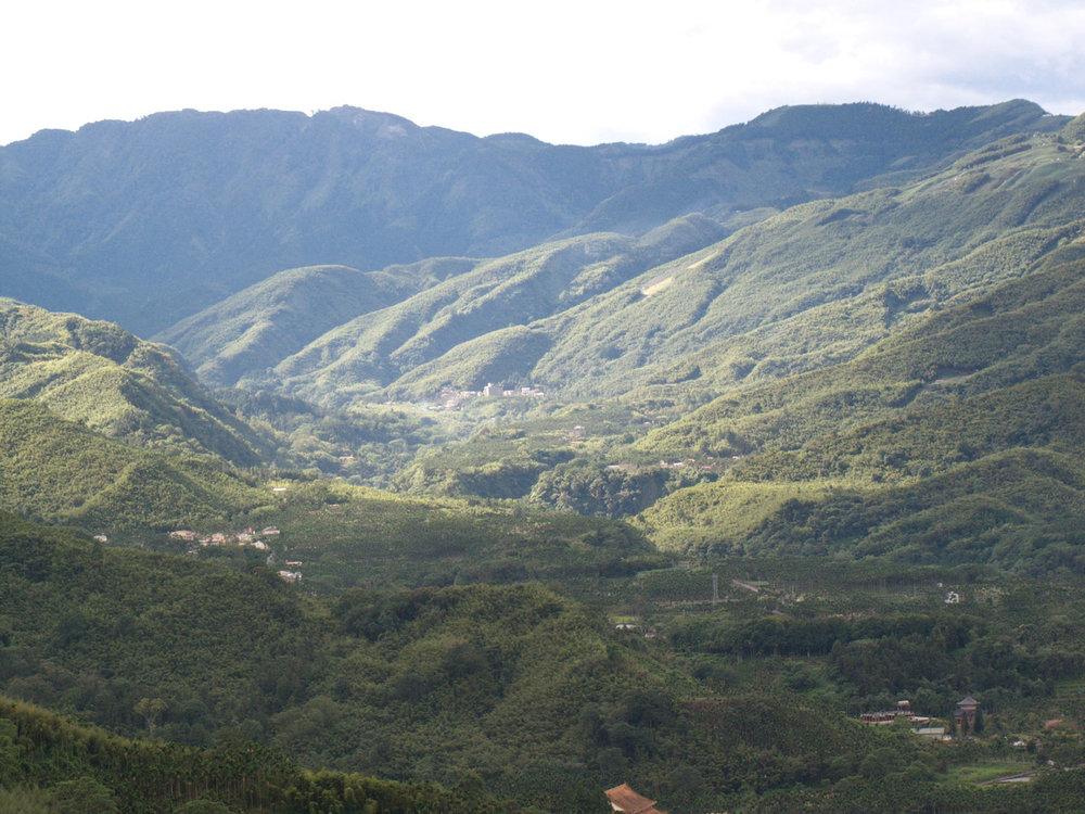 Nantou-Four-Seasons-oolong-tea-mountains.jpg
