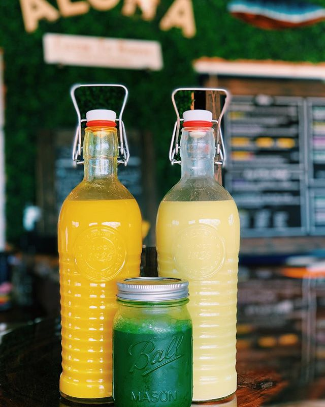 Feeling under the weather? Come by and take one (or all 3 😆) of our shots...we have wellness, ginger and wheatgrass available! #wellness #shots #farmtobarncafe #haleiwa #coldpressedjuice