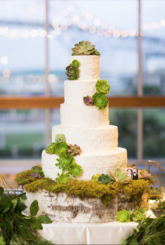 Succulent adorned wedding cake with custom build birch cake stand I www.avenueievents.com.png