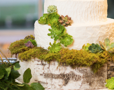 Custom birch cake base with moss & succulents I www.avenueievents.com.png