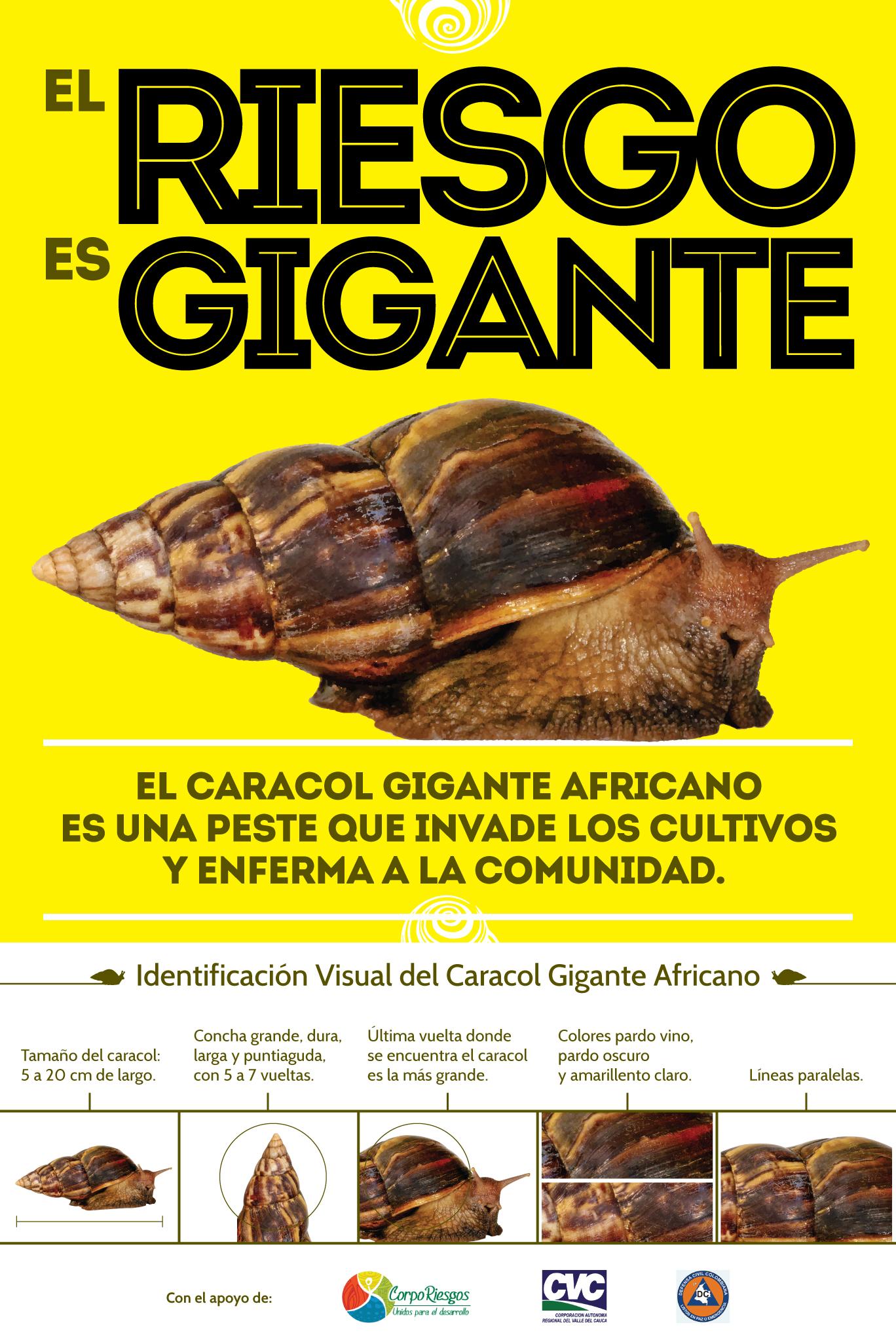 El-riesgo-es-gigante-Poster-1-B.jpg