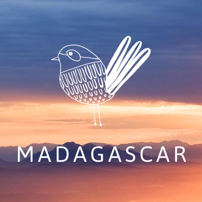 Madagascar-Thumbnail.png