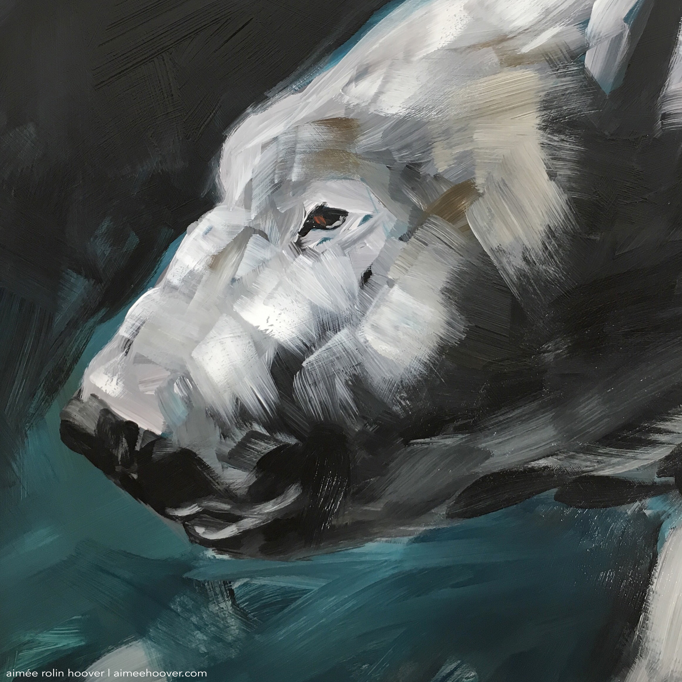 "Polar Bear (DETAIL) : 9"" x 12"" 