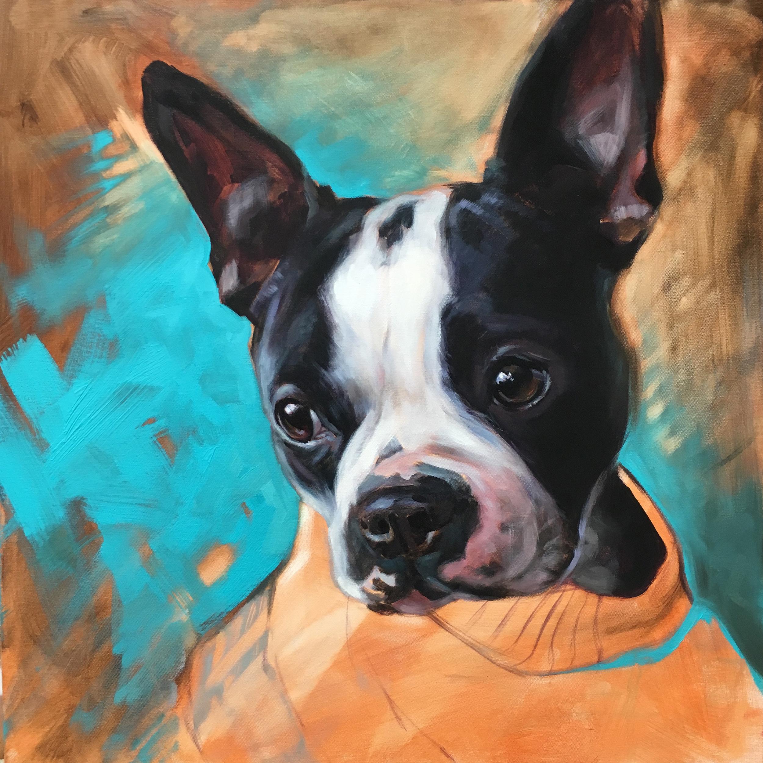 """Pancake"" (Boston Terrier) | 2019 | 20"" x 20"" | Acrylic on canvas | (Sold)"
