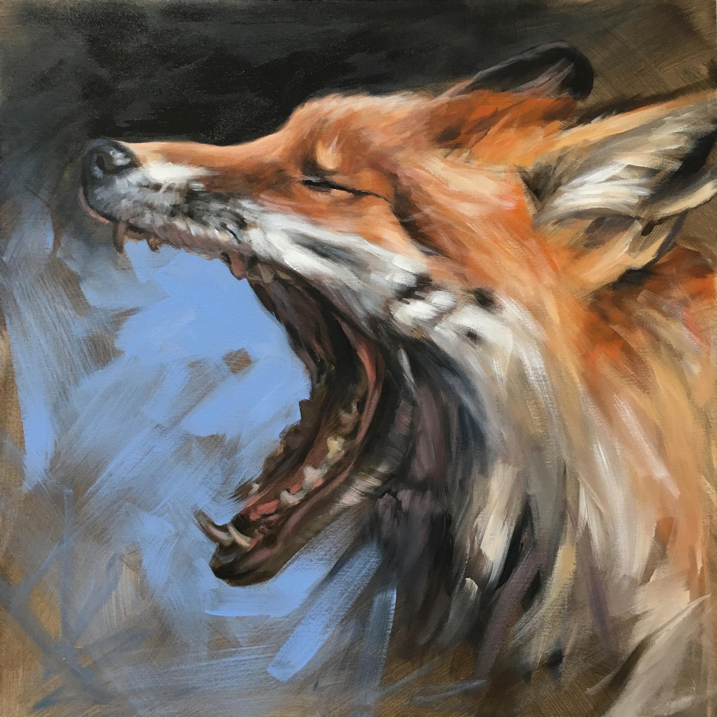 "Yawning Fox | 2018 | 20"" x 20"" | Acrylic on canvas | Sold"