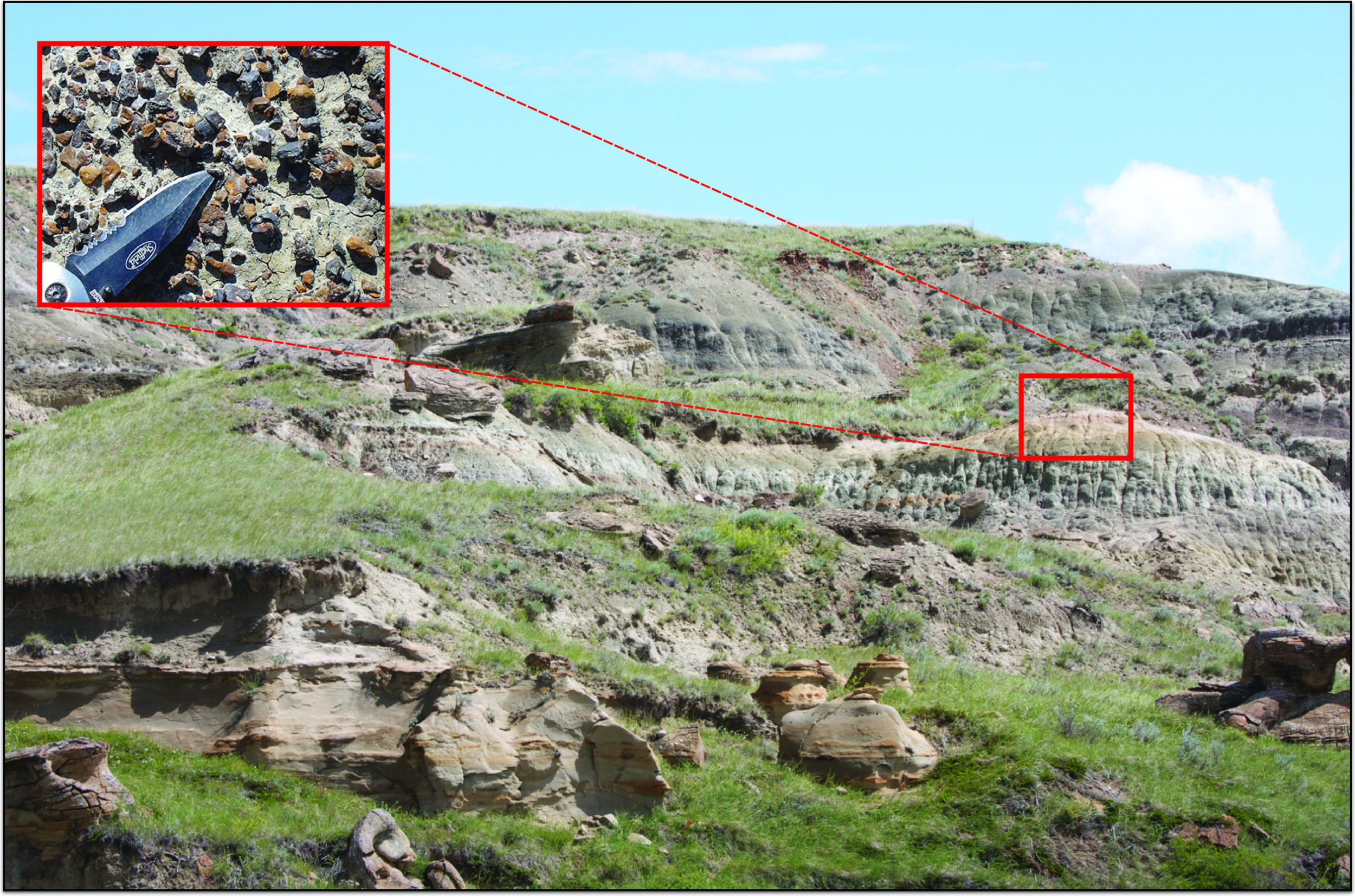 A microsite in the Oldman Formation of Alberta, Canada