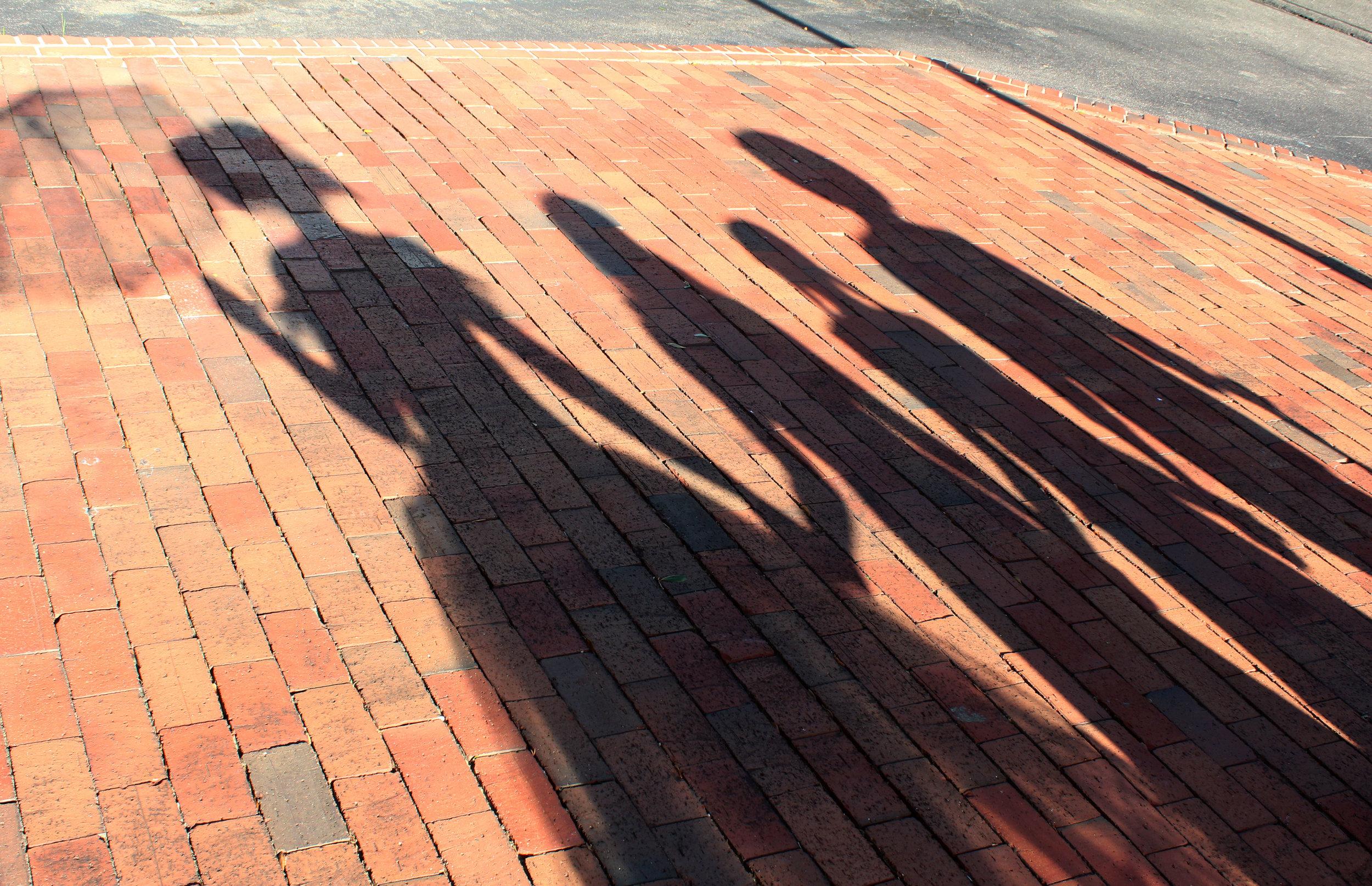 Shadow - IMG_1227.JPG