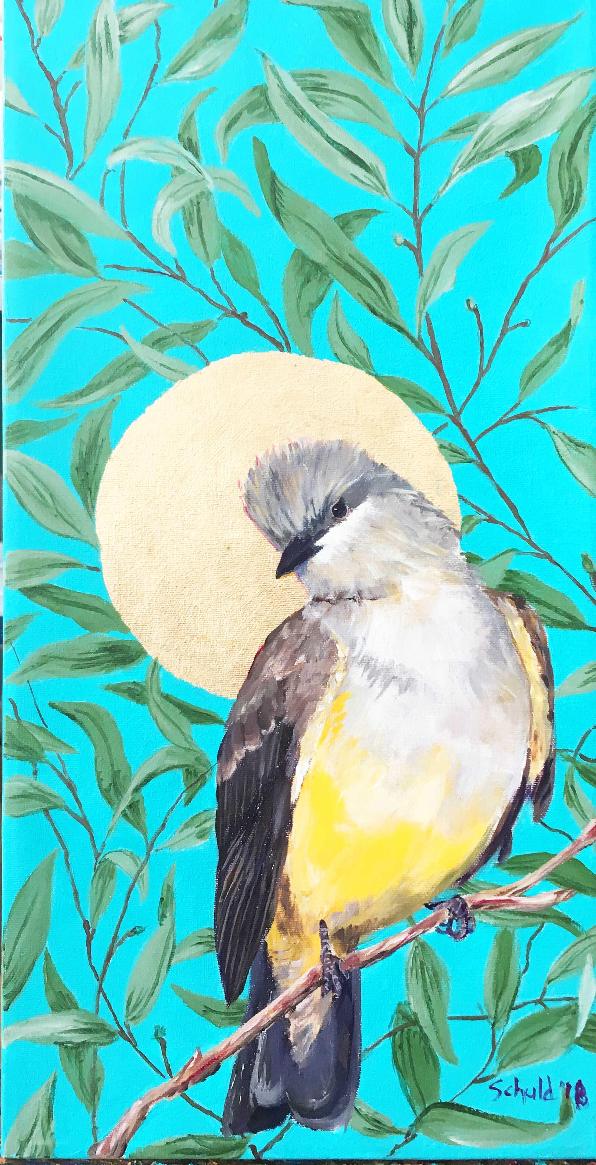 western kingbird thumb.jpg