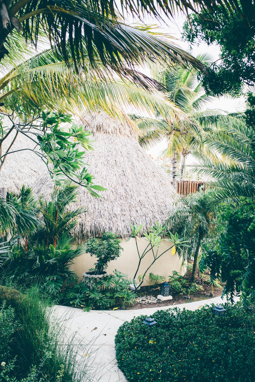 Mukul Resort Nicaragua_Spa 2016-251.jpg