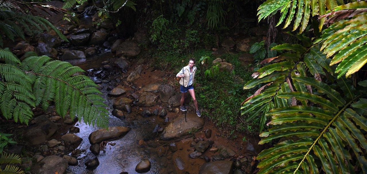 alg-hm-hiking.jpg