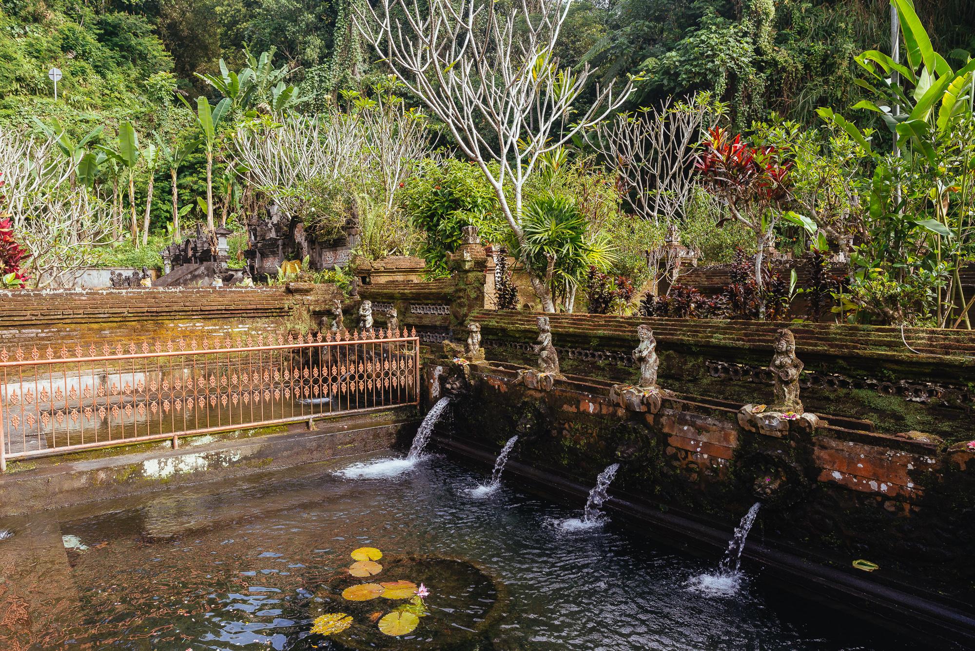 indonesia_2017-340.jpg