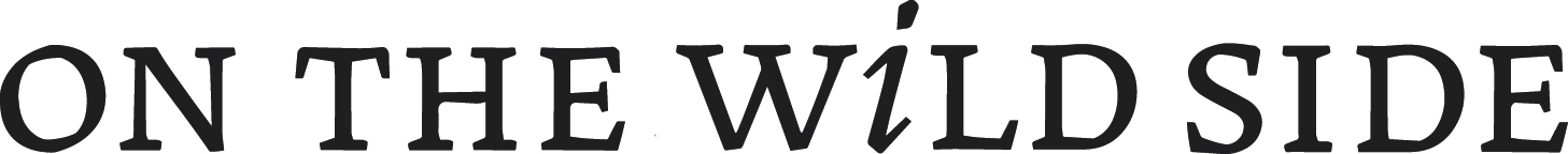WS_logo-s-sienne.jpg