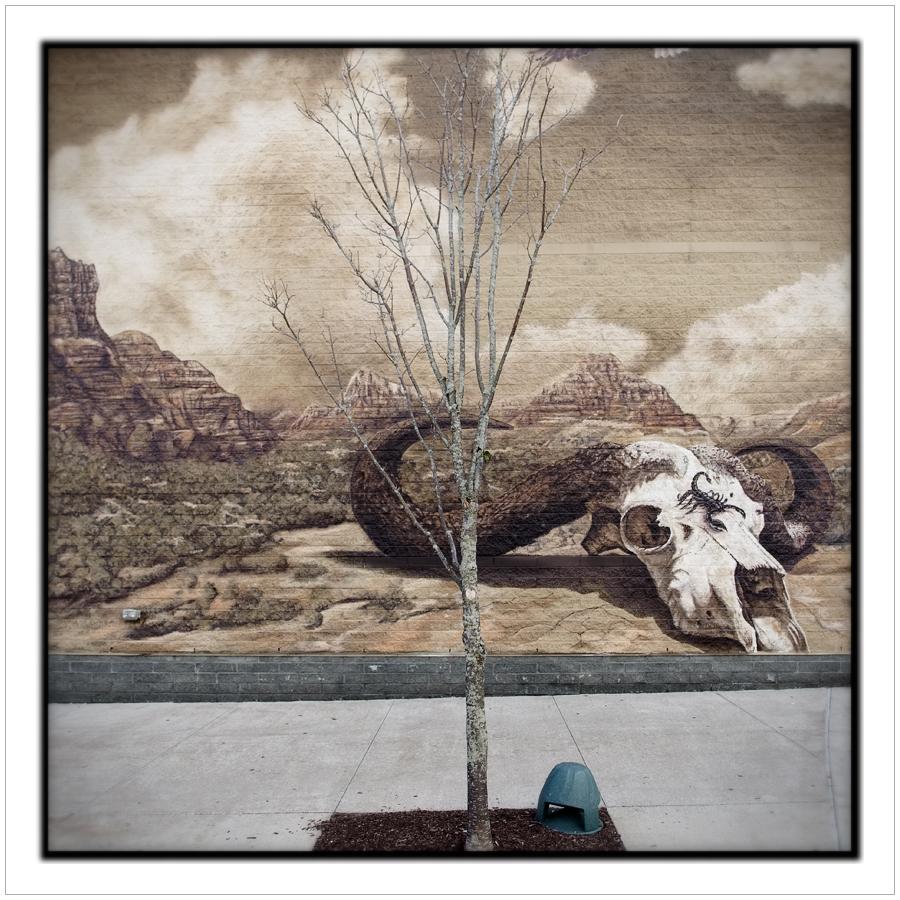 matching tree and mural   ~ Foxboro, MA.