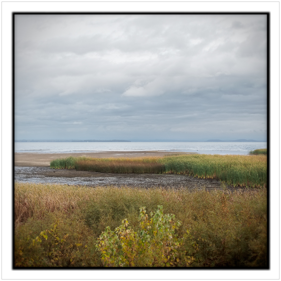 marsh / Lake Champlain   ~ Peru, NY - in the Adirondack PARK (click to embiggen)