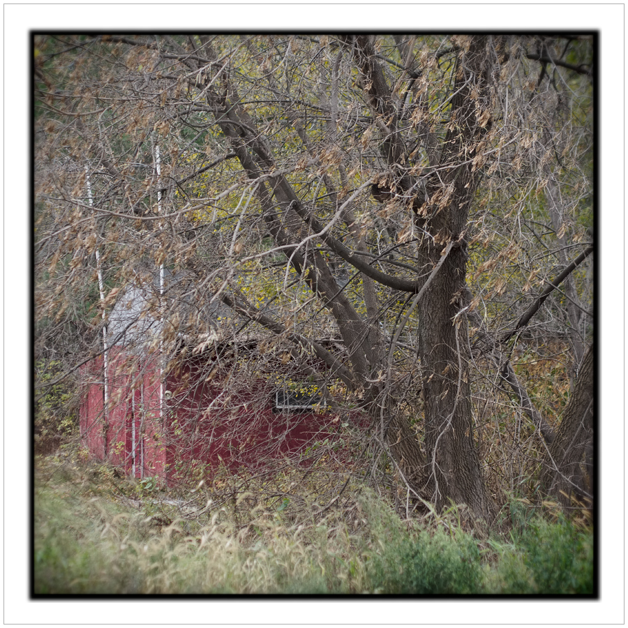 red shed   ~ Au Sable Forks, NY - in the Adirondack PARK (click to embiggen)