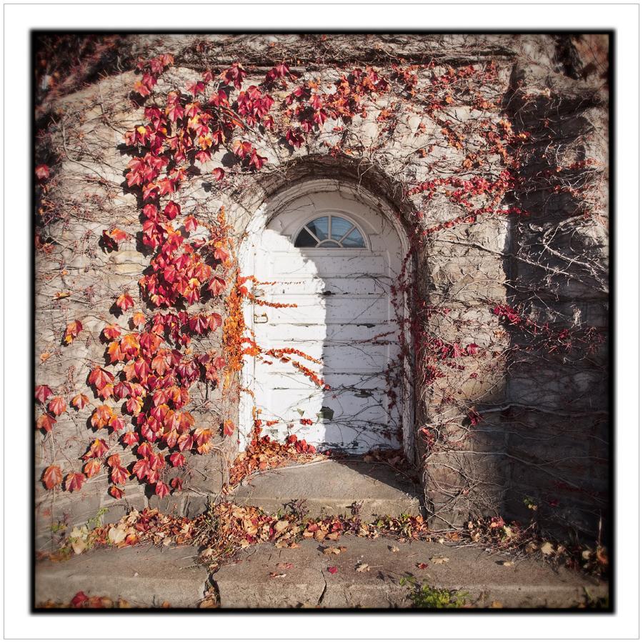 door   ~ Alexandria Bat, NY • (click to embiggen)