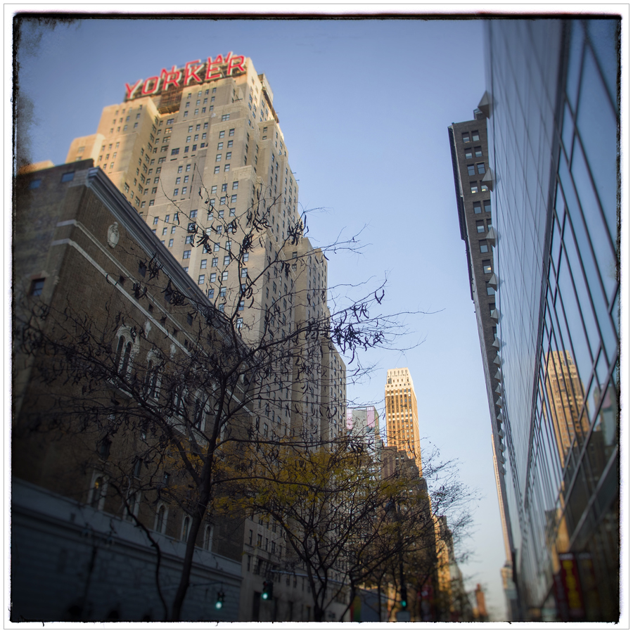 NEW YORKER   /  34th street  ~ Manhattan / NYC, NY (click to embiggen)