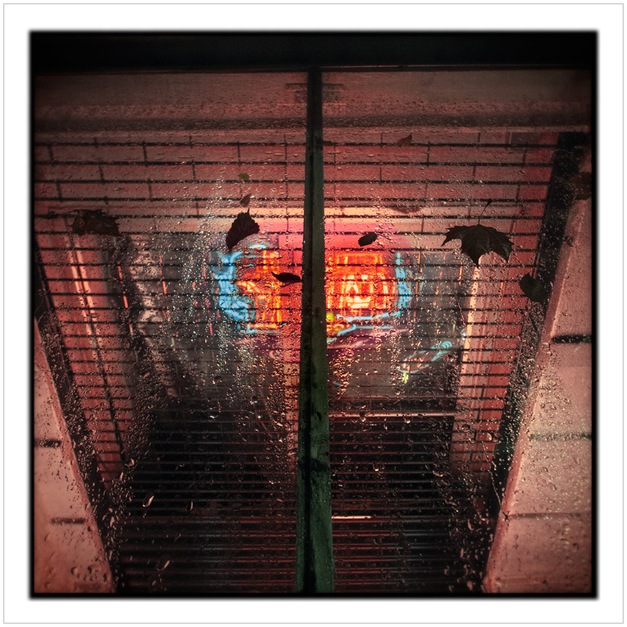 neon   /   window grate   ~ Manhattan / NYC, NY (click to embiggen)