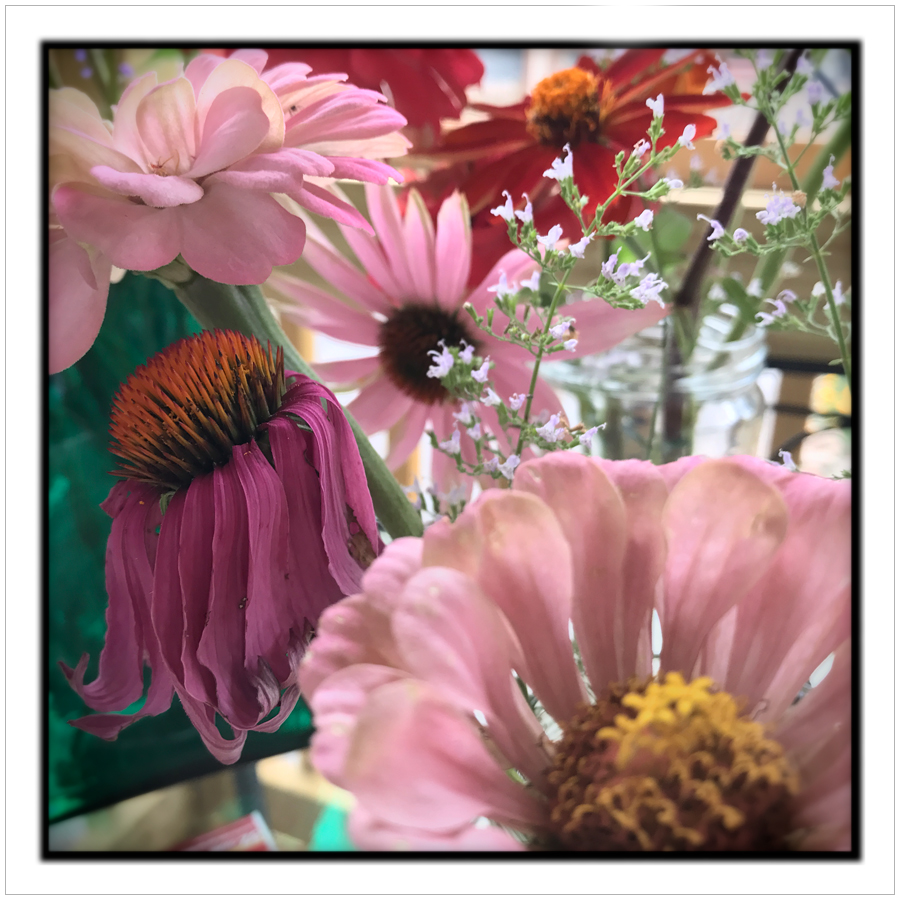 flowersclosesq.jpg