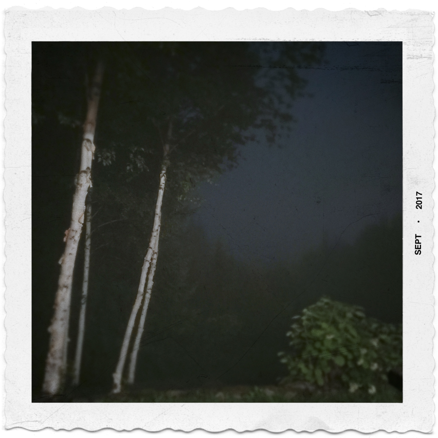 midnight fog   ~ Rist Camp