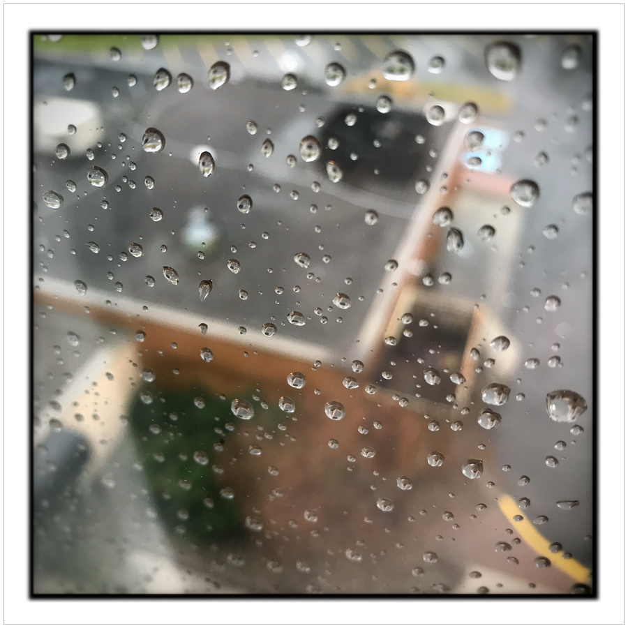 raindrops   ~ Ottawa, ON. (embiggenable) • iPhone