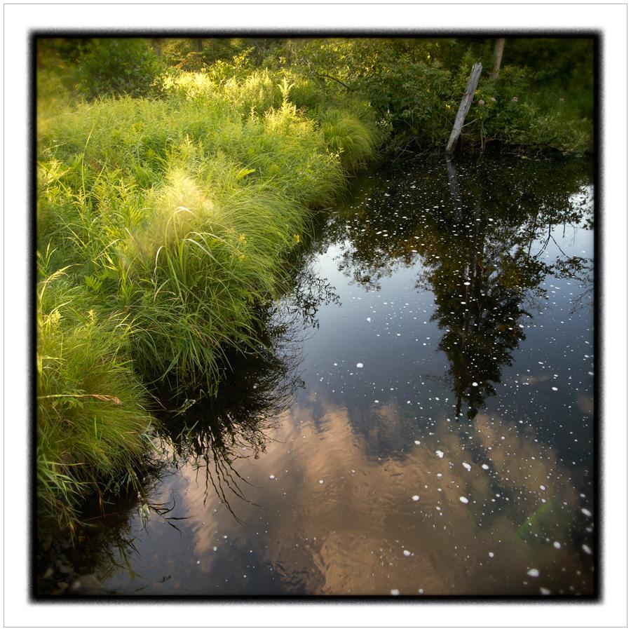 water9.jpg