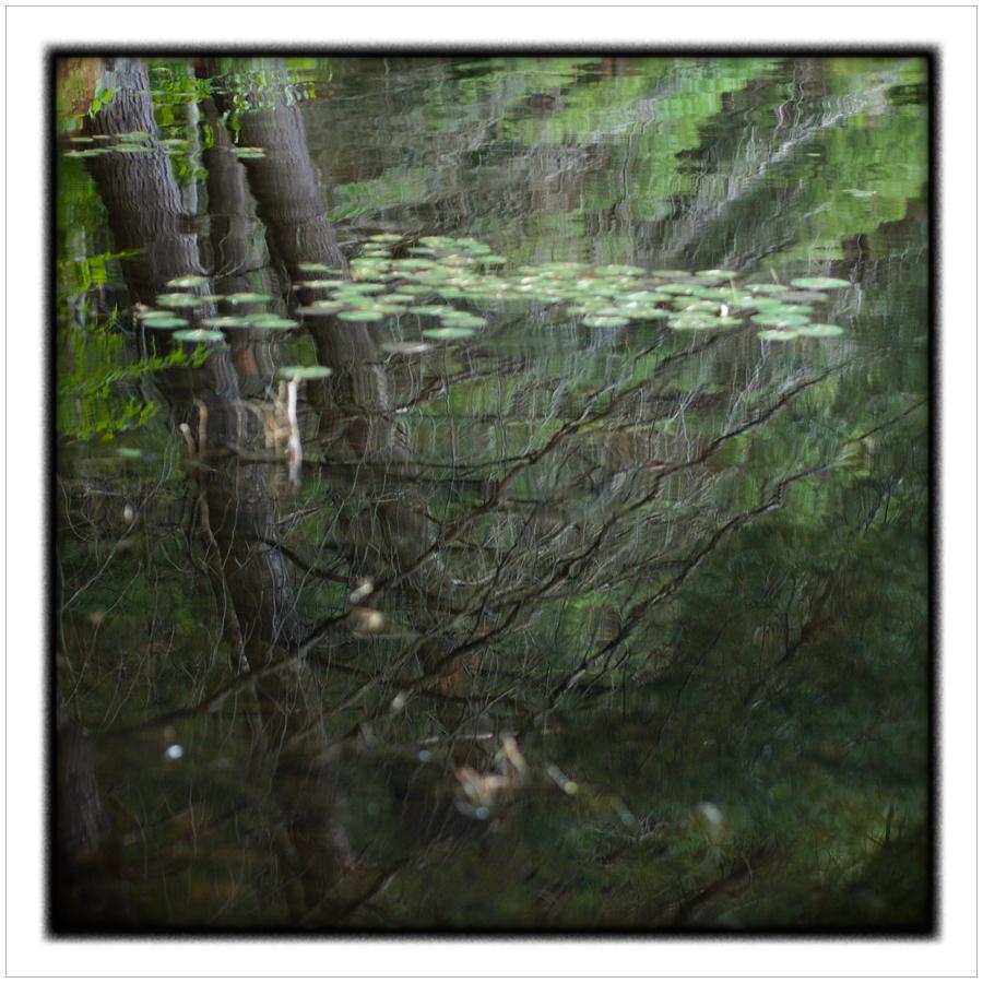 water14.jpg
