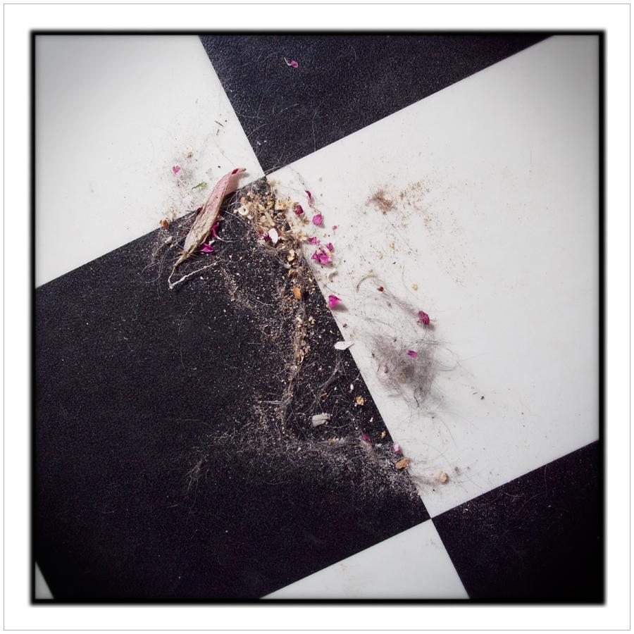 floor sweepings   ~ (embiggenable) • µ4/3