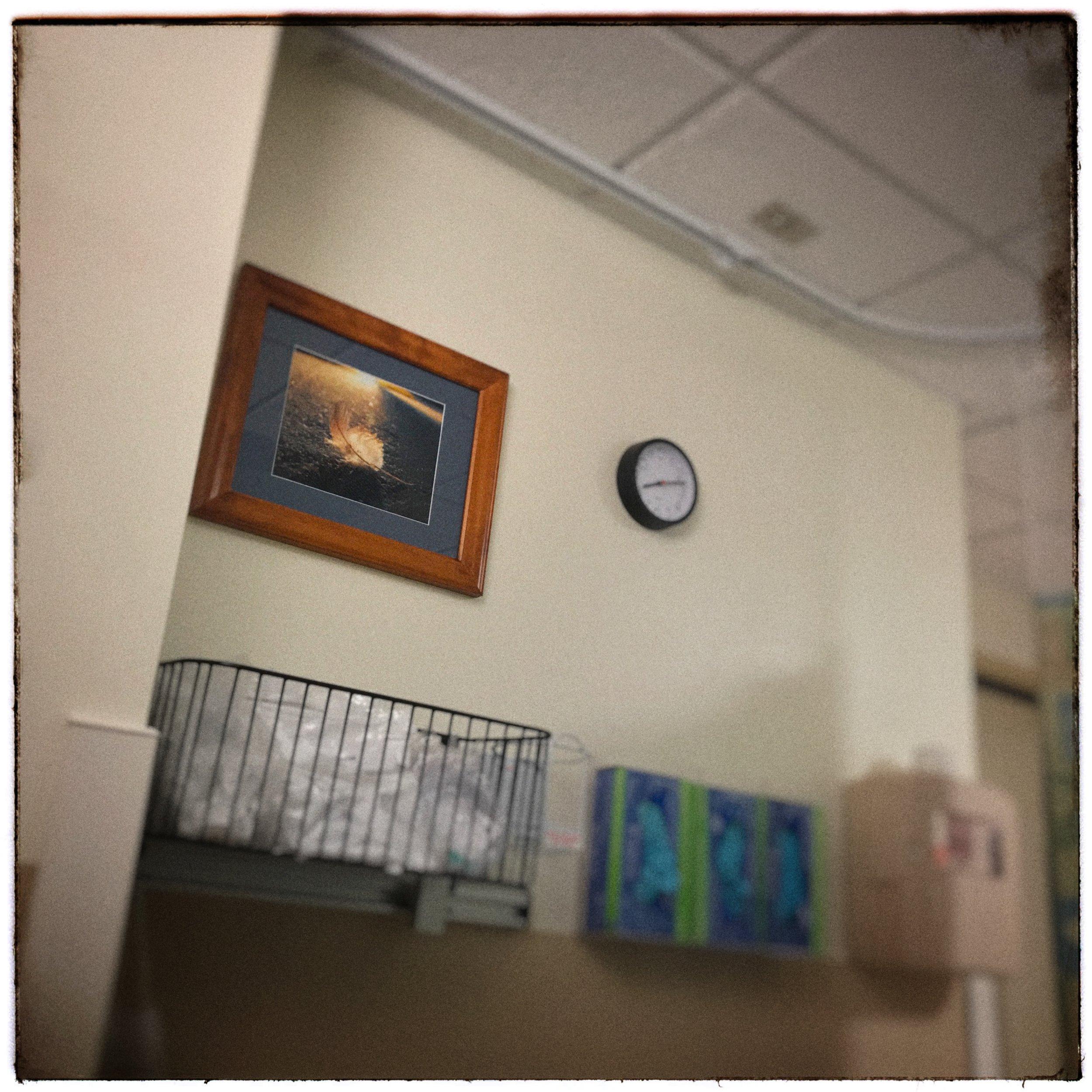 hospital art •  iPhone