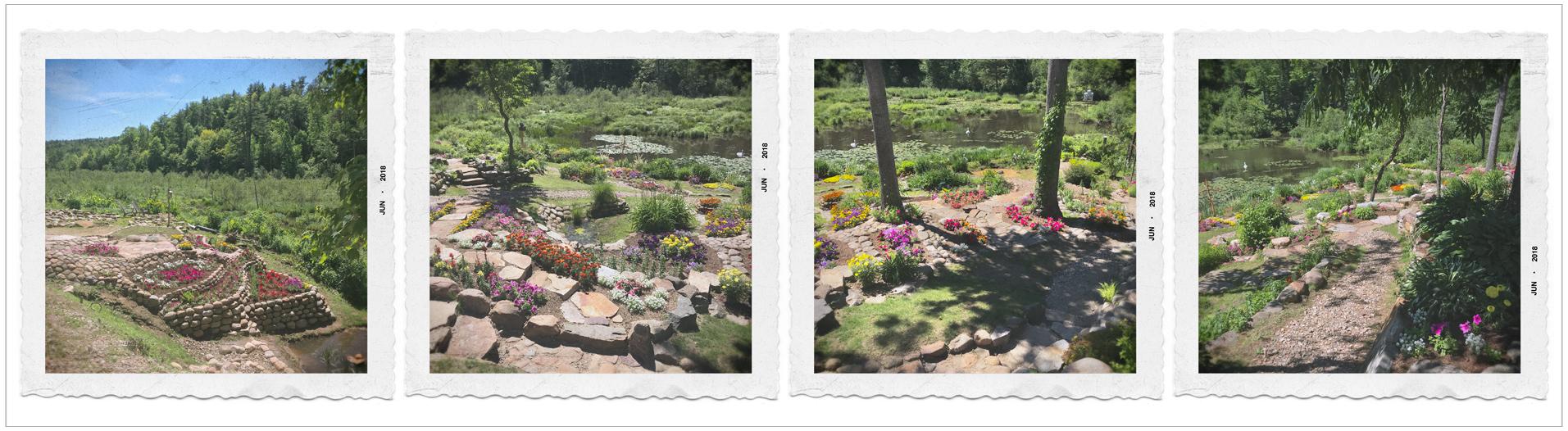 serenity garden  ~ embiggenable •  iPhone