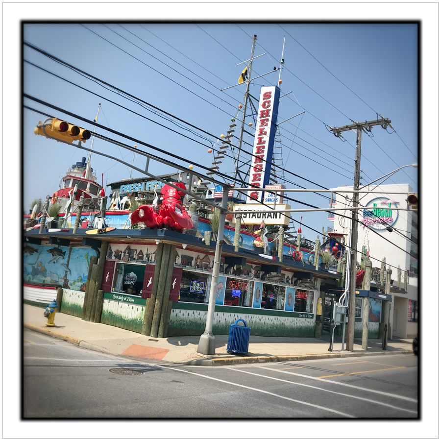 Schellengers Restaurant   ~ Wildwood, NJ (embiggenable) • iPhone