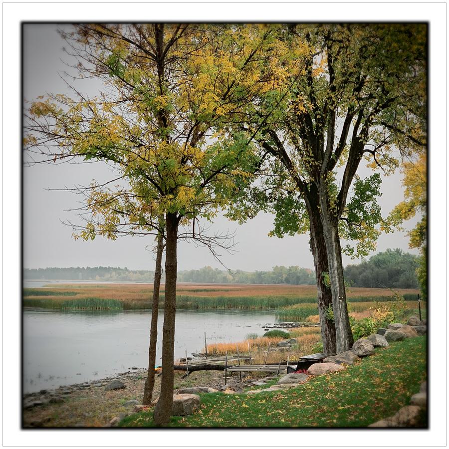 marsh   / Lake Champlain, NY • Adirondack PARK
