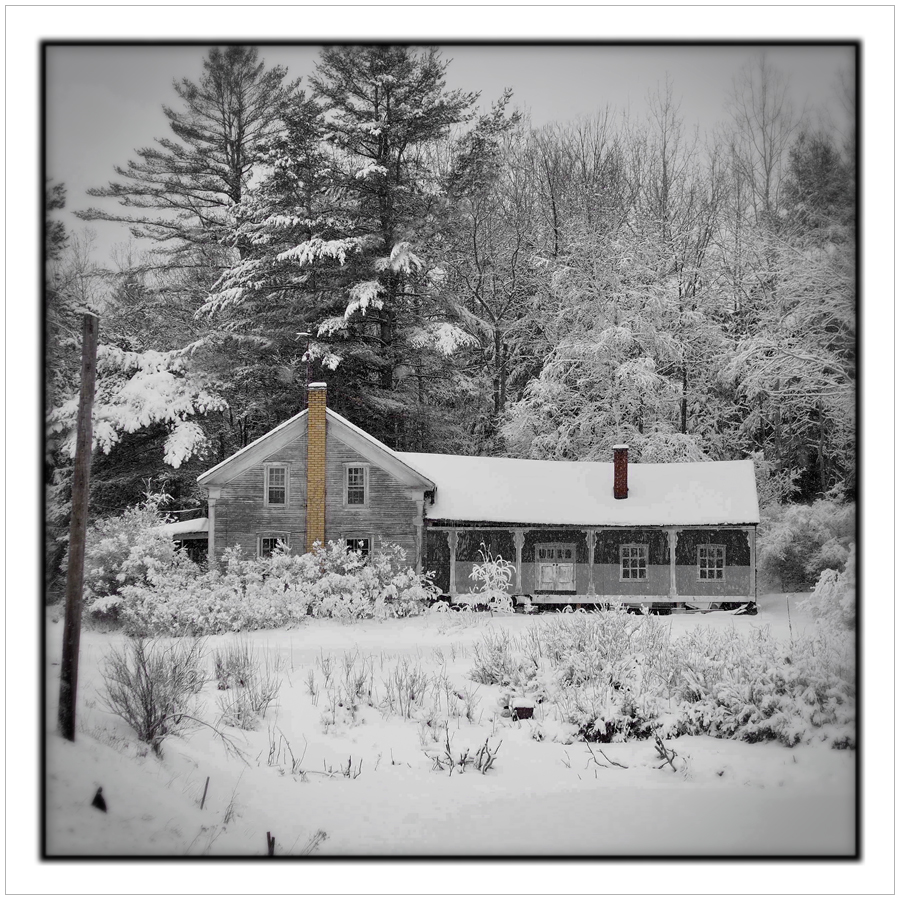 Spring snowstorm   ~ (embiggenable) • iPhone (no effects applied) / the house's rear porch, pillars, windows/doors are a mural painted on plywood