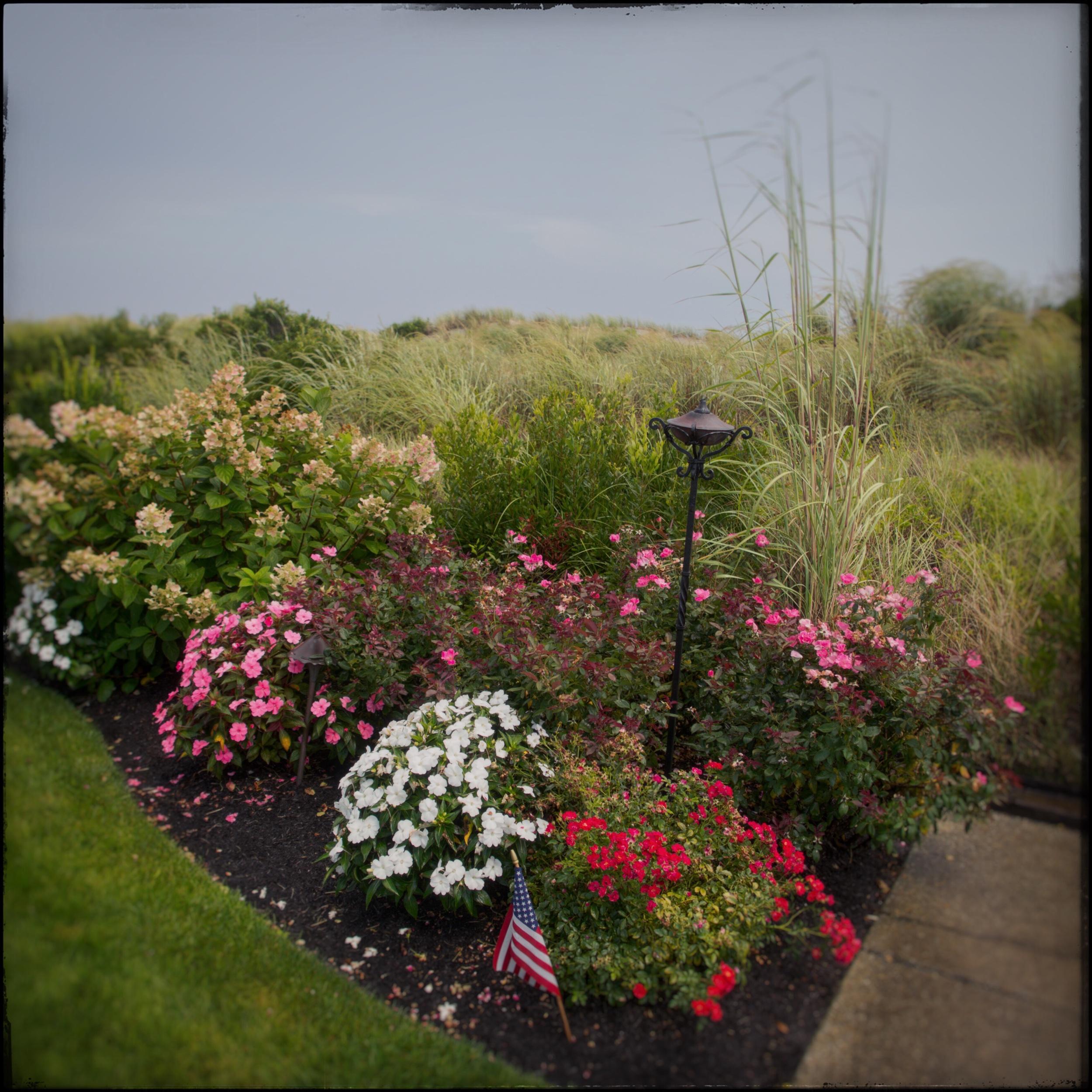 dune after rain   ~ Stone Harbor, NY (embiggenable) • iPhone