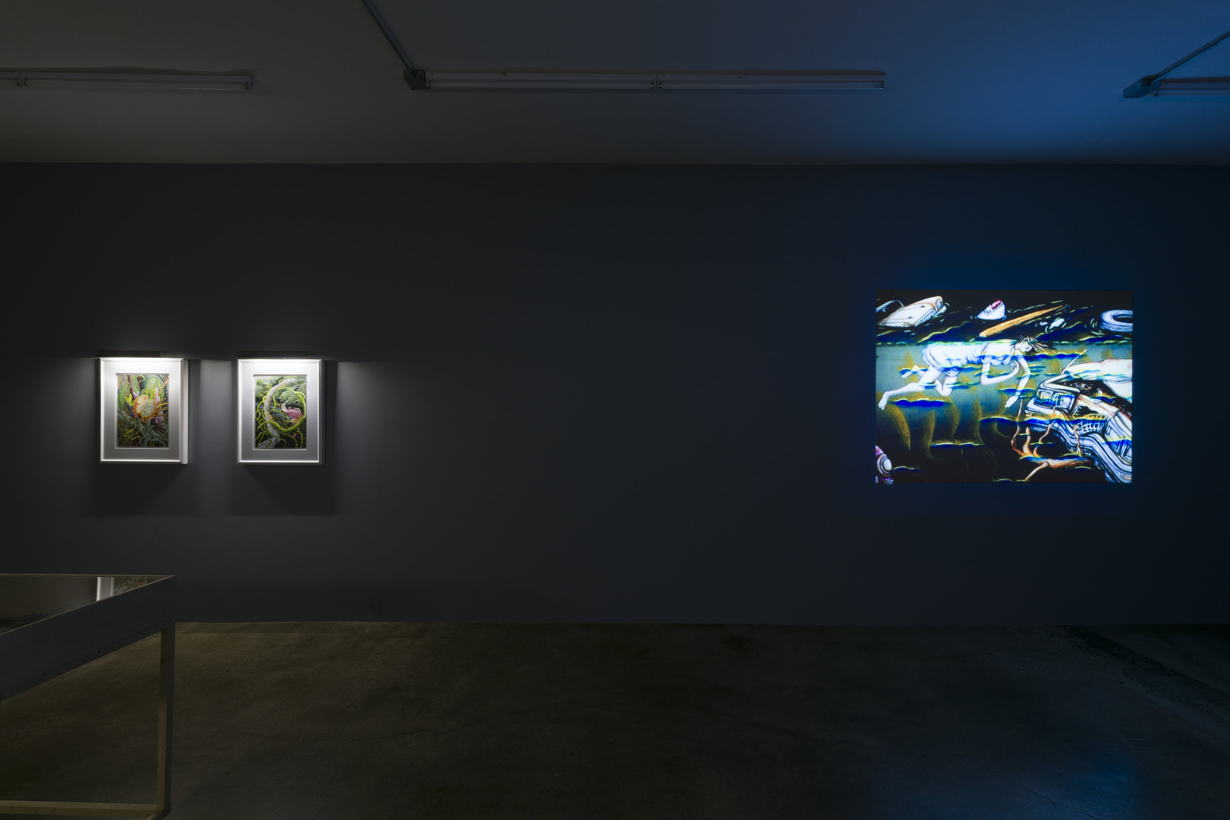 Installation view of Suzan Pitt:  Joy Street   March 31 - May 5, 2019  Photo by Ruben Diaz   Link to press release.