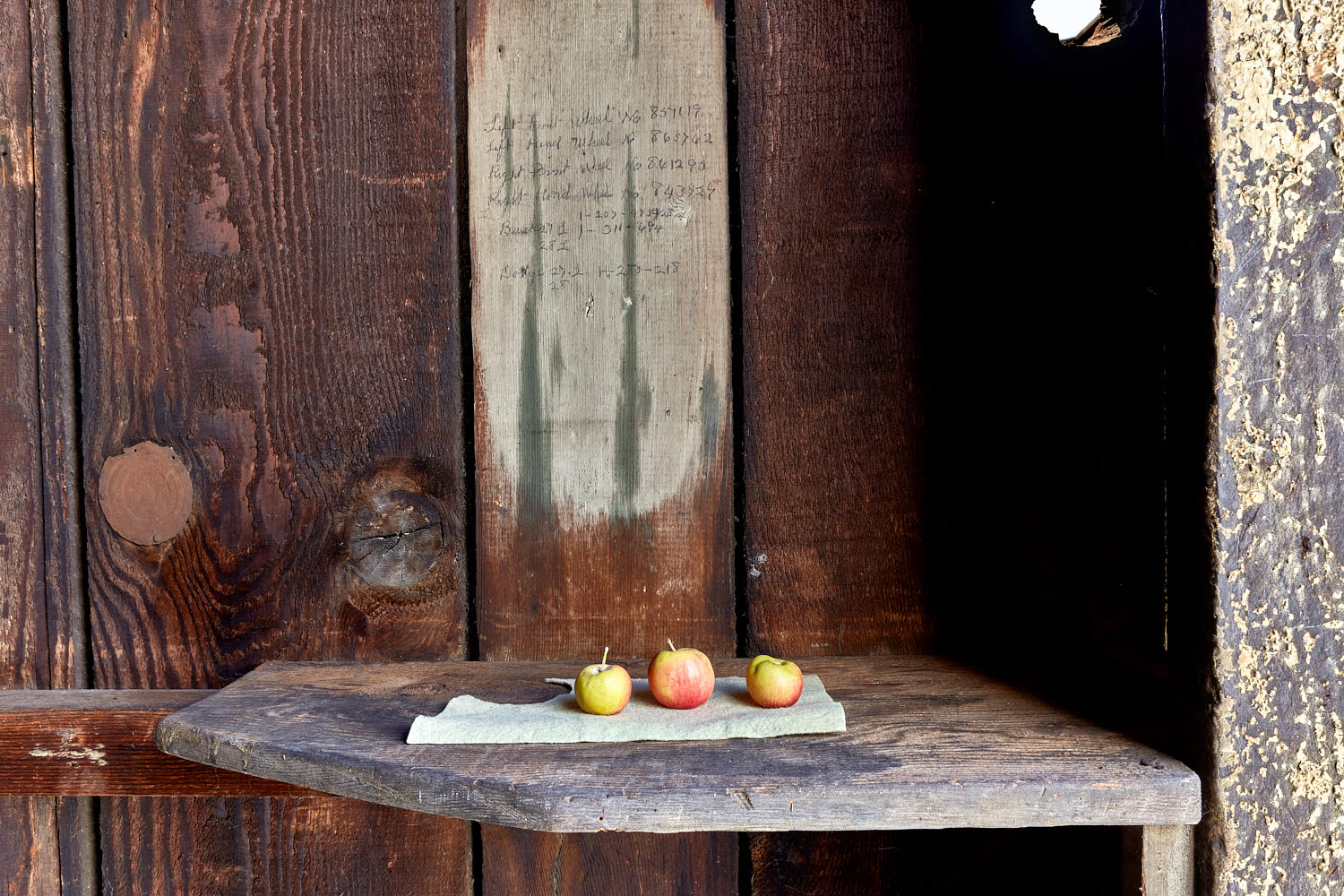 Name Of Piece: Still life with apples  Size of piece: variable  Medium: Apples and felt  Photographed by:  Veli -Matti Hoikka  Location, Year: Reserve Ames, Los Angeles, CA, 2017