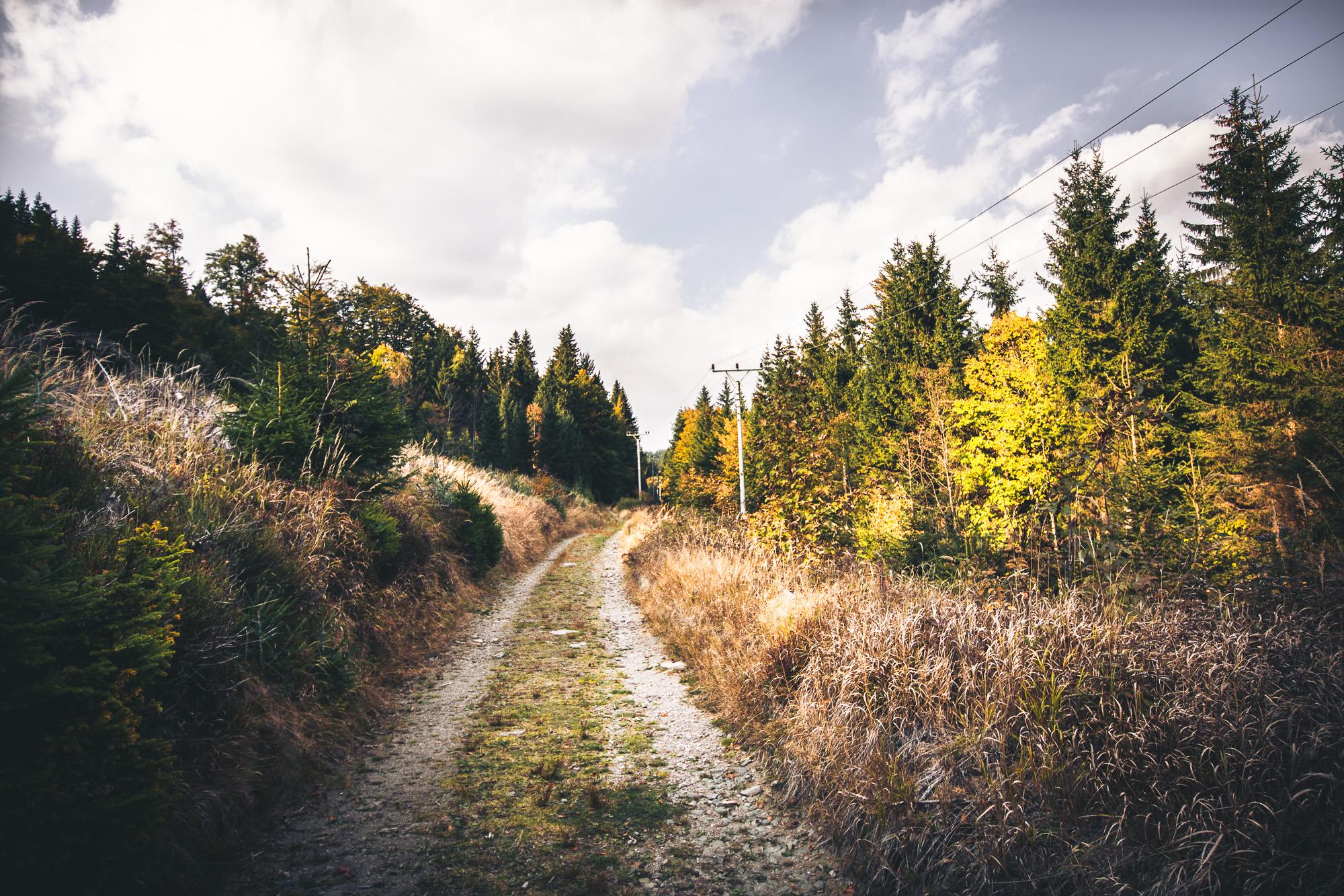Jedna z cest