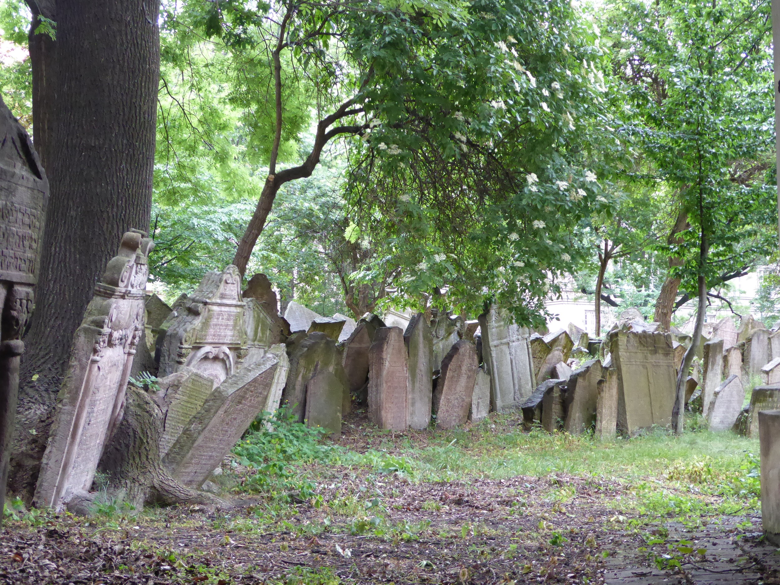 Graveyard in Jewish Quarter.